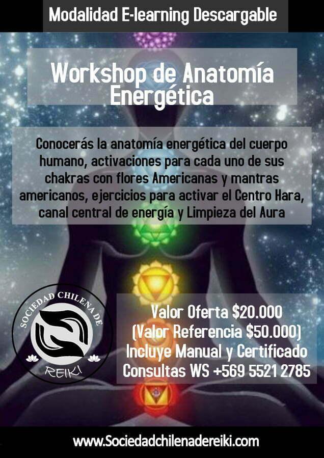 Worshop Anatomia Energetica